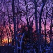 Sunrise And Snow Art Print