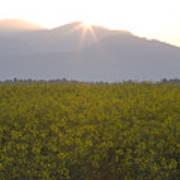 Sunrise Bursting Over The Kamnik Alps And Rapeseed Art Print