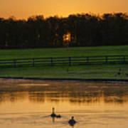 Sunrise On A Gettysburg Duck Pond Art Print
