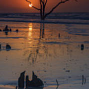 Sunrise On Boneyard Beach Art Print