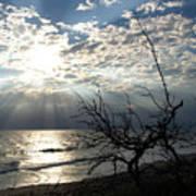 Sunrise Prayer On The Beach Art Print