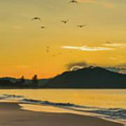 Sunrise Seascape With Mountain And Birds Art Print
