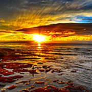 Sunset At Low Tide Art Print