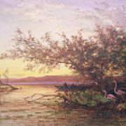 Sunset, Camargue Art Print