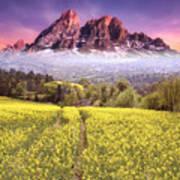 Sunset Fields Art Print