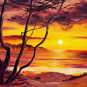 Sunset From A Carmel Cypress Tree  Art Print