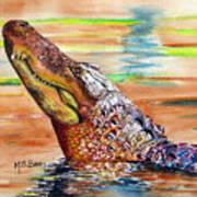Sunset Gator Art Print