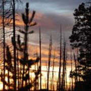 Sunset In Yellowstone Art Print