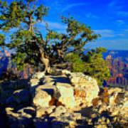 Sunset On The North Rim - Grand Canyon Art Print