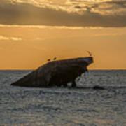 Sunset On The Wreck Of The Concrete Ship Atlantus Art Print