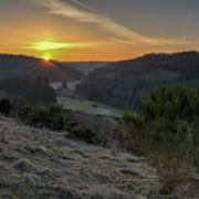Sunset Over Forest Art Print