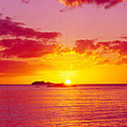 Sunset Over The, Atlantic Ocean, Cat Art Print