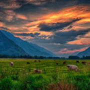 Sunset Over The Pasture Art Print