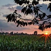 Sunset Over The Plains Art Print