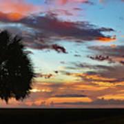 Sunset Palm Florida Art Print