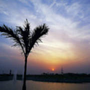 Sunset - Palm Tree Art Print