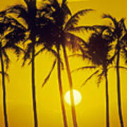 Sunset Palms And Family Art Print