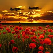 Sunset Poppies Fighter Command Art Print
