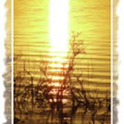 Sunset Serenade Art Print