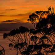 Sunset /torrey Pines Image 2 Art Print