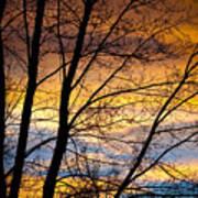 Sunset Tree Silhouette Art Print
