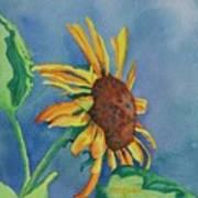 Sunshine On My Shoulders Art Print