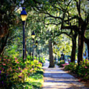 Sunshine On Savannah Sidewalk Art Print
