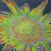 Sunverve Art Print
