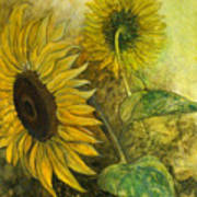 Sunworshipper II Art Print