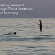 Sup With Dolphin - Haiku Art Print