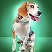 Super Pets Series 1 - Super Buckley Art Print