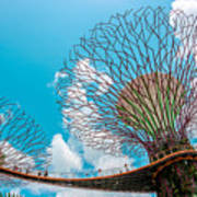 Super Tree Grove- Gardens By The Bay Art Print