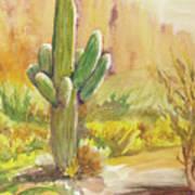 Superstition Saguaro Art Print