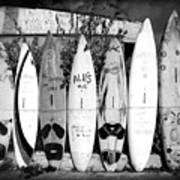 Surf Board Fence Maui Hawaii Square Format Art Print