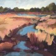 Surprise Wetland Art Print