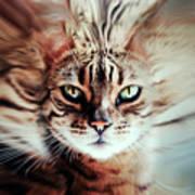 Surreal Cat Art Print