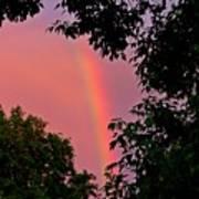 Surround The Rainbow Art Print by Amanda Struz