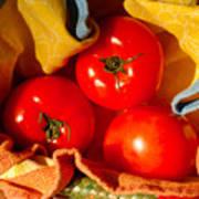 Swaddled Tomatoes Art Print