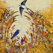 Swallow Tale Art Print