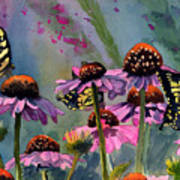 Swallowtails And Cone Flowers Art Print