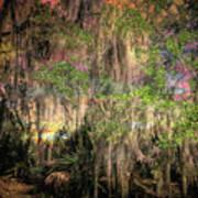 Swamp 2 Art Print
