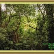 Swamp L A With Decorative Ornate Printed Frame. Art Print