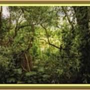 Swamp L B With Decorative Ornate Printed Frame. Art Print