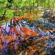 Swamp Pallet Art Print