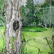 Swamp Thing Art Print
