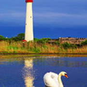 Swan At The Lighthouse Art Print