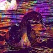 Swan Bird Animal Lake Summer  Art Print