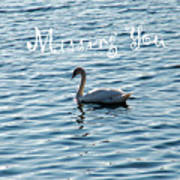 Swan Miss You Art Print