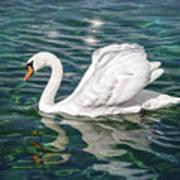 Swan On Lake Geneva Switzerland  Art Print