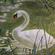 Swanlike Neck Art Print